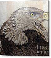 Screaming Gold Canvas Print