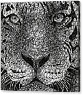 Scribble Tiger Canvas Print