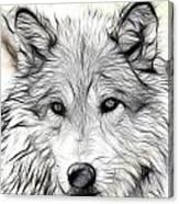 Scrimshaw Grey Wolf Canvas Print
