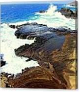 Sculpted Coastline Canvas Print