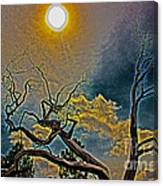 Sculpture In The Sun Canvas Print