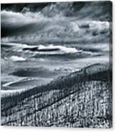 Land Shapes 27 Canvas Print