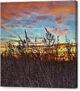 Sea Fields Canvas Print