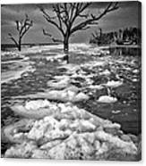Sea Foam Botany Bay Canvas Print
