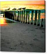 Sea Gulls On Pilings At Sunset Canvas Print
