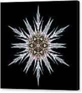 Sea Holly I Flower Mandala Canvas Print