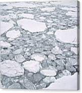 Sea Ice Pancake Ice Forming Antarctica Canvas Print