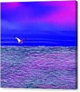 Sea. Last Rays Of Sun Canvas Print