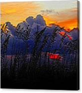 Sea Oat Sunset Canvas Print