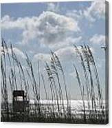 Sea Oats And Safety Canvas Print