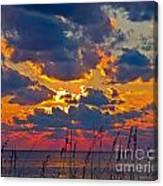Sea Oats Silhouette Canvas Print