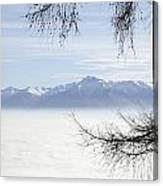 Sea Of Fog And A Tree Canvas Print