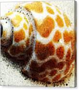 Sea Shell Beach Painting Art Canvas Print