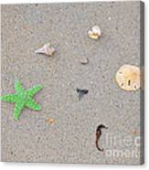 Sea Swag - Green Canvas Print