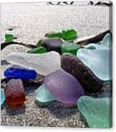 Seaglass And Seaweed Canvas Print