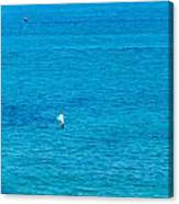 Seagull Cruising Over Azure Blue Sea Canvas Print