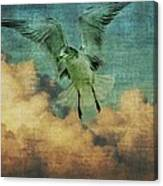 Seagull In The Clouds Canvas Print