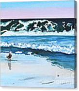 Seagull In The Sand Canvas Print
