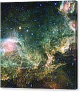 Seagull Nebula Canvas Print