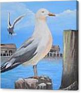Seagull On Piling Canvas Print