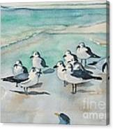 Seagull Party Canvas Print