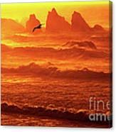 Seagull Soaring Over The Surf At Sunset Oregon Coast Canvas Print