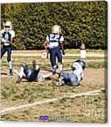 Seahawks Vs Bruins 8268 Canvas Print