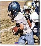 Seahawks Vs Bruins 8383 Canvas Print
