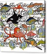 Sealife Dreamland IIi Canvas Print