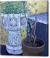 Sean's Planter Canvas Print