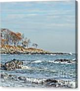 Seapoint Beach  Canvas Print