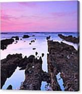Seascape 26 Canvas Print