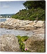 Seascape 5 Canvas Print
