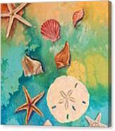Seashells Fantasy Canvas Print