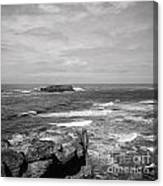 Seaside Bluff Bw Canvas Print
