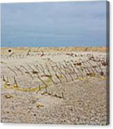 Seaside Heights...beyond The Dunes. After Hurricane Sandy Canvas Print