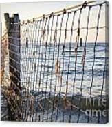 Seaside Nets Canvas Print