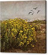 Seaside Sun Canvas Print
