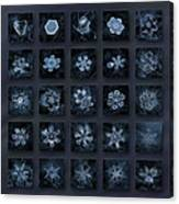 Snowflake Collage - Season 2013 Dark Crystals Canvas Print