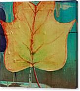 Season Of Change Piece 2 Of 2 Canvas Print