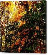 Season Of Color Canvas Print