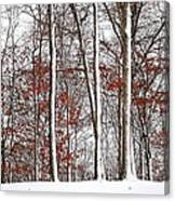 Seasons Converge Canvas Print
