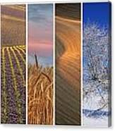 Seasons Of The Palouse Canvas Print