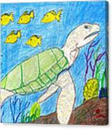 Seaturtle Swimming The Reef Canvas Print