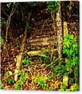 Secret Stairway Canvas Print