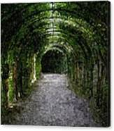 Secret Tunnel Canvas Print