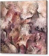 Secrets And Lace Canvas Print