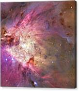 Secrets Of Orion Canvas Print