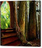 Secrets Of The Forest Canvas Print
