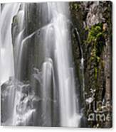 Section Of The Falls Canvas Print